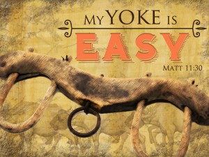 My-Yoke-is-Easy_main-300x225